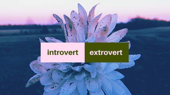 The Inner Battle of Extrovert vs. Introvert